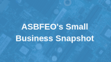 ASBFEO's Small Business Snapshot