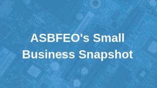ASBFEO's Small Business Snapshot